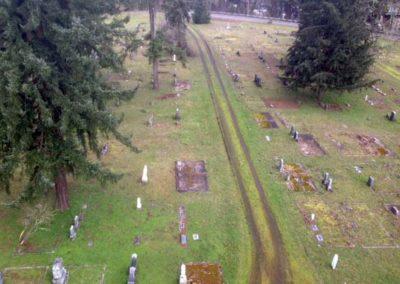 aerial view_crop